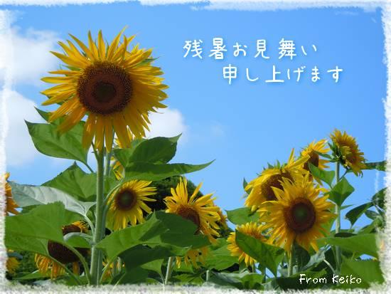 20013暑中お見舞い_Keikoさん