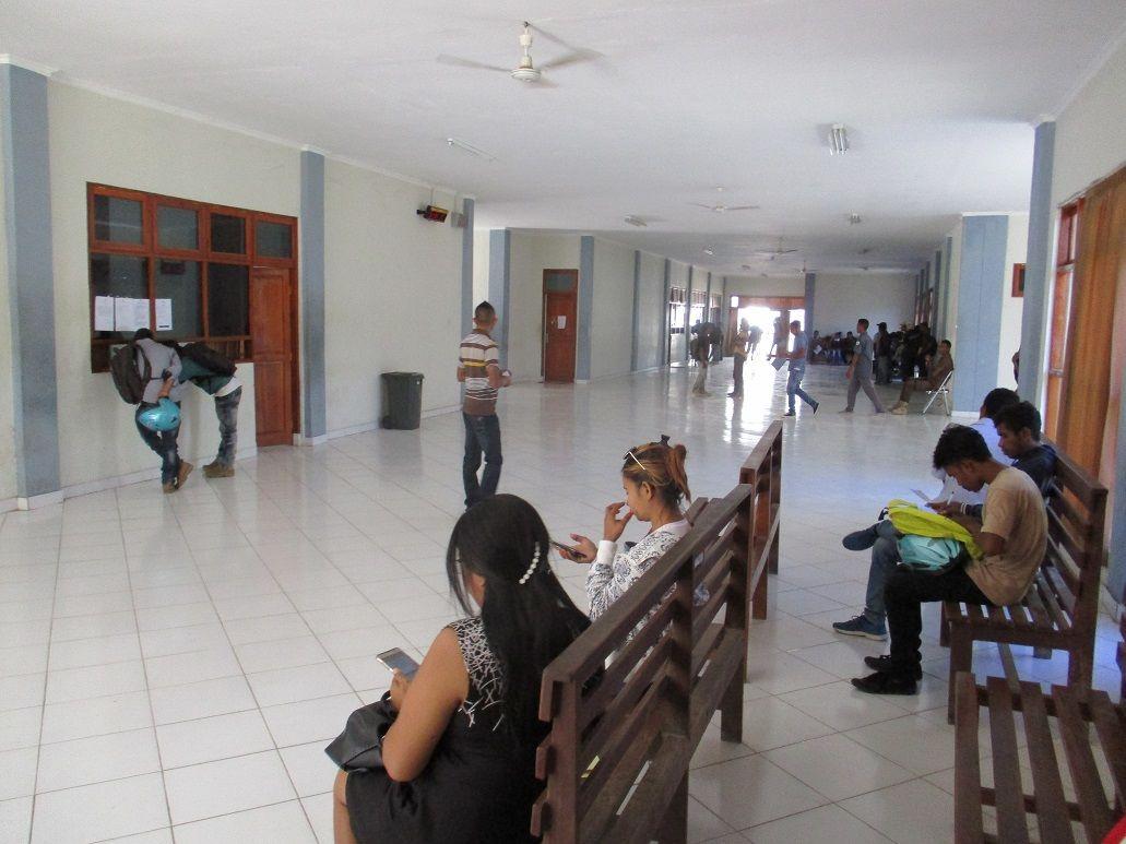 Tropical East Timor   ワニ通信   東ティモール