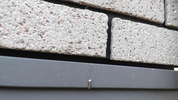 一条工務店セゾン ヤモリのフン 水切り 隙間