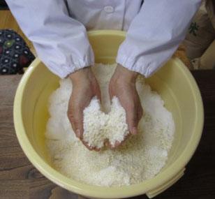 塩と糀を揉み解す.jpg