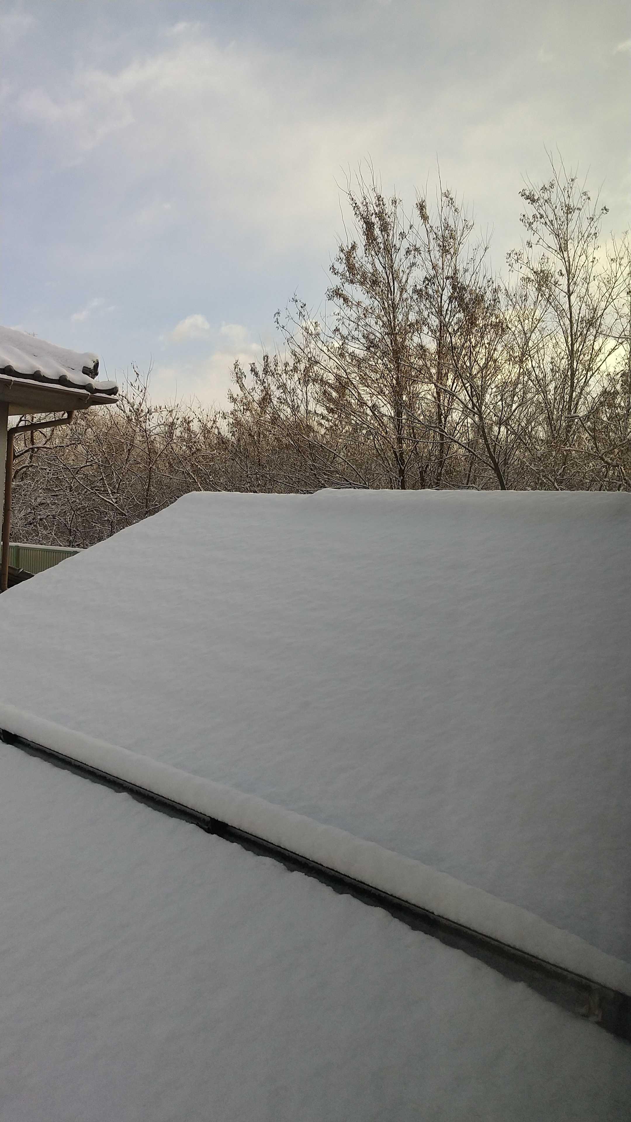 は 降る か 雪が 今年