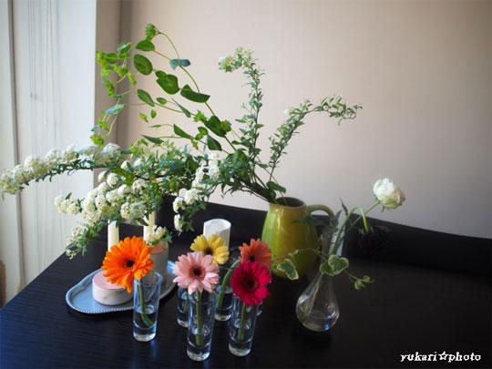flower2016041200.jpg