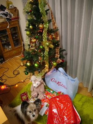 2012クリスマス8.JPG