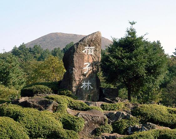 ピジャリム石碑1.jpg