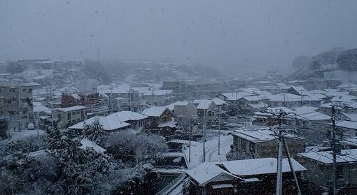 20130114 横浜大雪