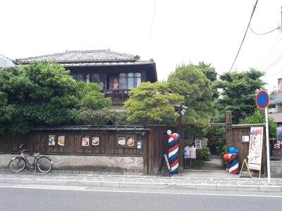 鎌倉イシワタリ2013年6月・2