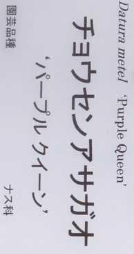 語源 キチガイ