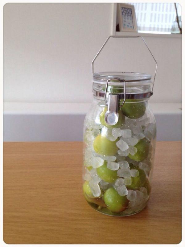 完成した梅シロップをWECKとマルティネリのリンゴジュースの ...