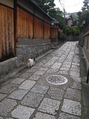 2012京都夏3−10.JPG