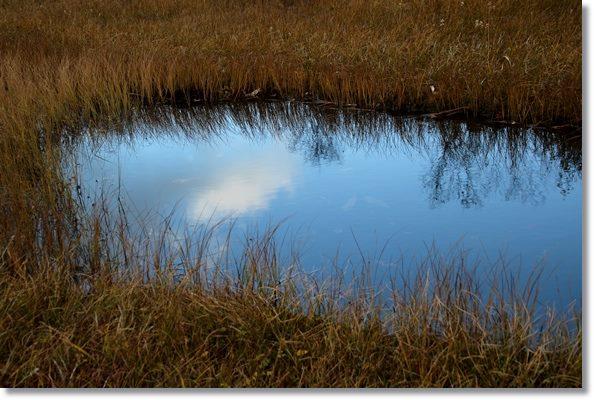 栂池自然園-57 池塘-1 15.10.2