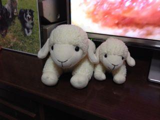 羊ぬいぐるみ