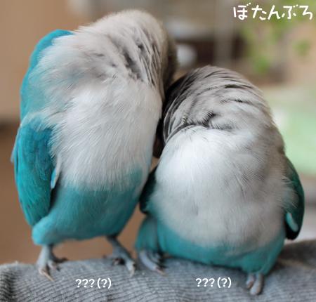 20121008_01.jpg