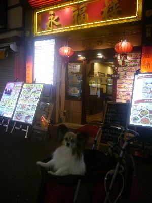 2012中華街2.JPG