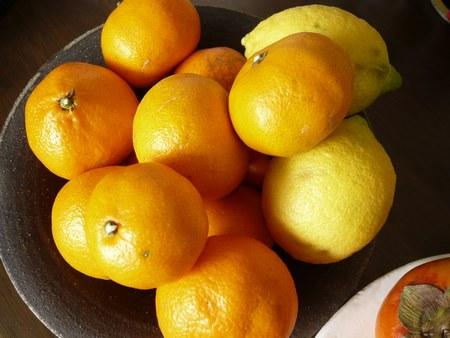 4みかん&レモン 4501.jpg