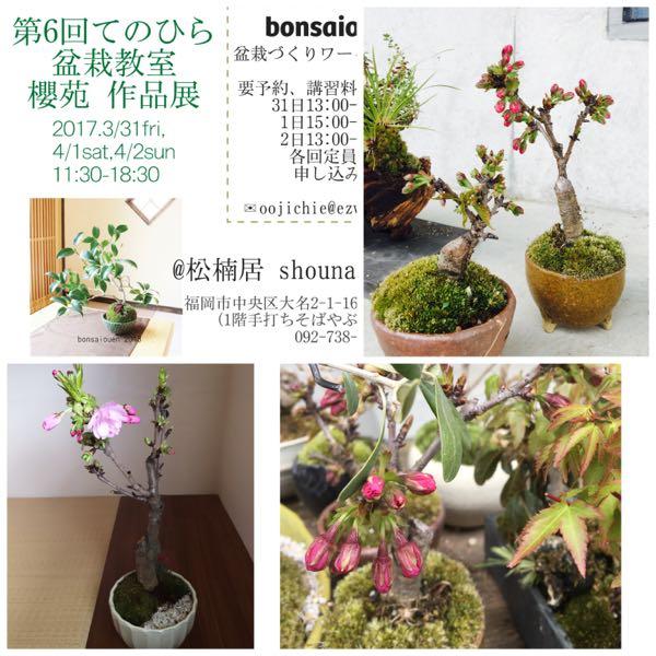 rblog-20170330074652-00.jpg