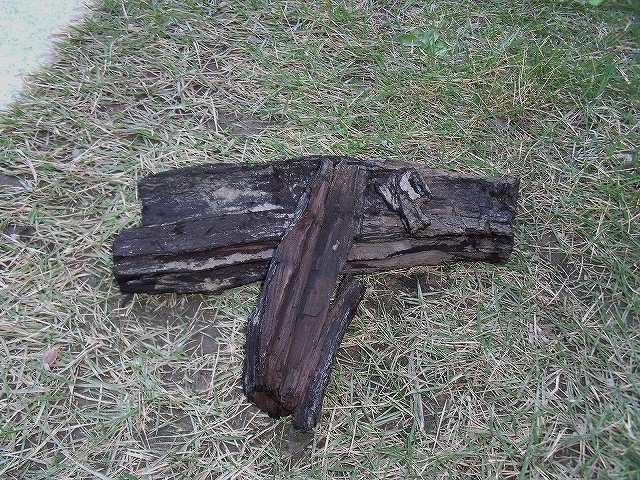 炭化した木片