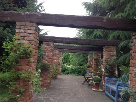 ホタル前の食事の時の庭