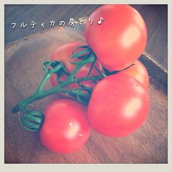 フルティカ 水耕栽培 房どり トマト