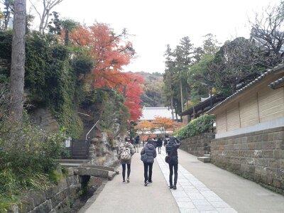 北鎌倉円覚寺坂道中2012年12月