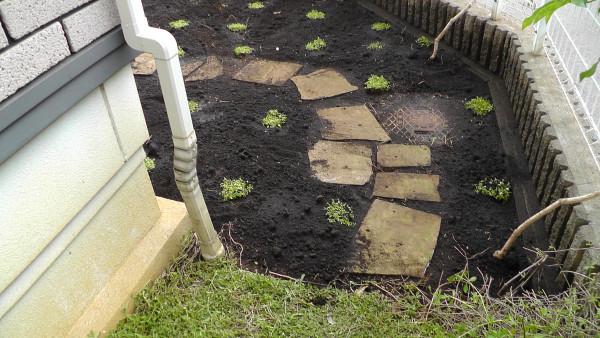敷石と雨水桝のフタ