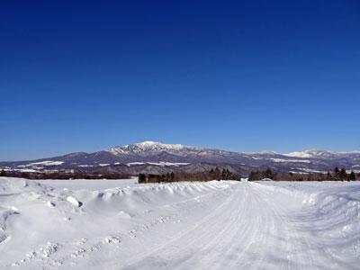 雪のキャベツロードと・・