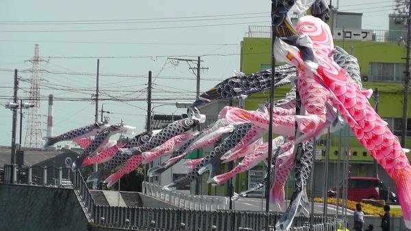 半田運河 鯉のぼり MIM(MIZKAN MUSEUM:ミツカンミュージアム)
