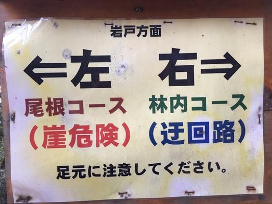 【写真5】.JPG