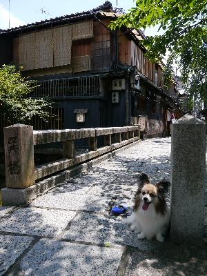 2012京都夏1−6.JPG