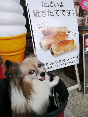 2012スカイツリー10.JPG