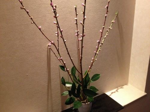 2玄関 桃の花 黒1500.jpg