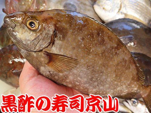 寿司 出前 江東区 平野