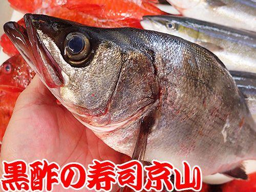 港区 南青山 美味しい魚 宅配寿司