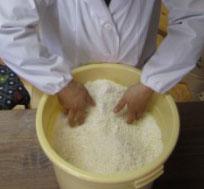 塩と糀を揉み解す3.jpg