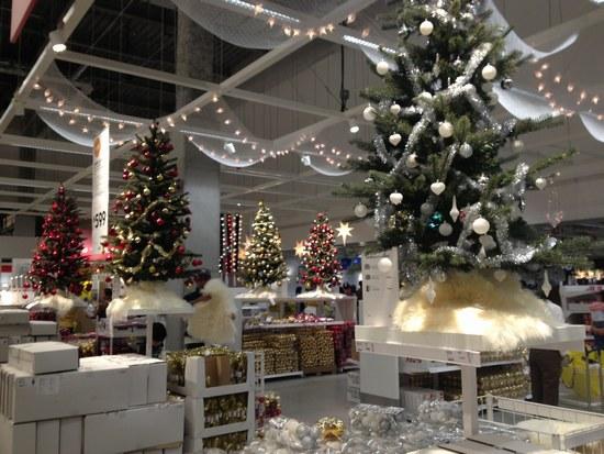 2ショールーム クリスマス13550.jpg
