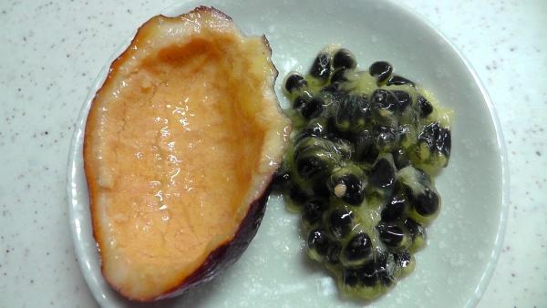 ムベの実 裏側 種ばかりの果実