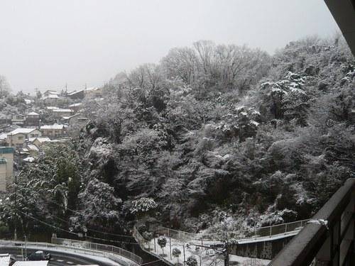 1雪景色5001.jpg