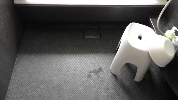一条工務店のバスルームに標準装備されるドライ床に水たまり