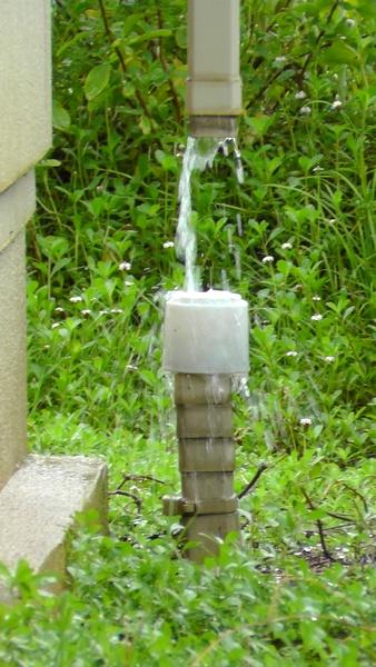 雨どい 散水