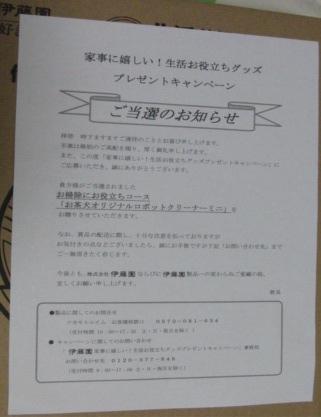 2013.お茶犬1.JPG