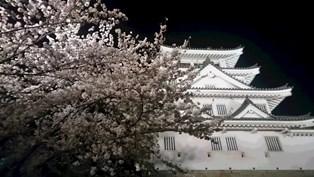 02_墨俣城2.jpg