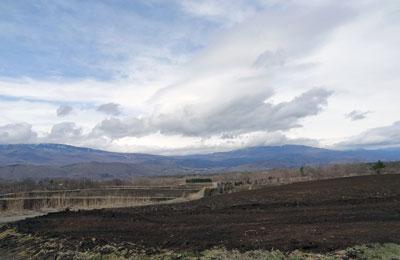 キャベツ畑始動4月4日2