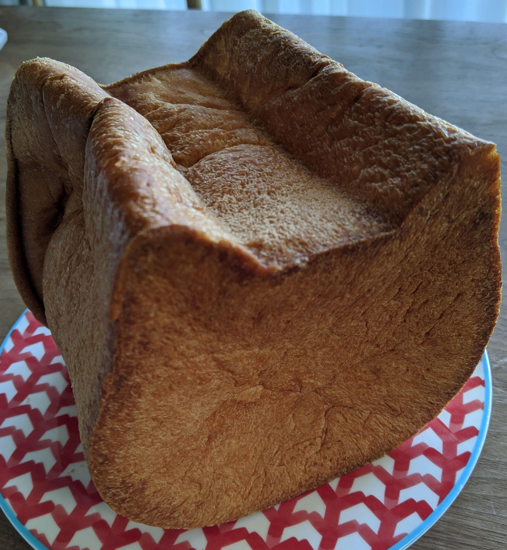 千葉 ねこねこ 食パン