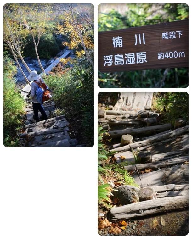 栂池自然園-42 楠川へ 15.10.2