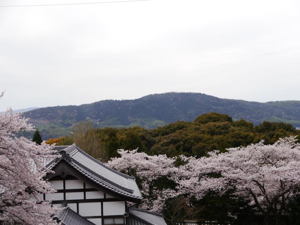 P1060759(笠原寺).jpg