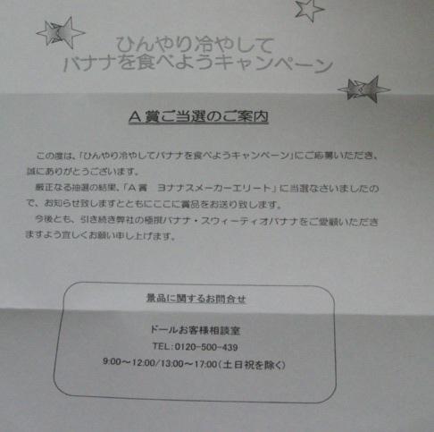 2014.11ドール1.JPG