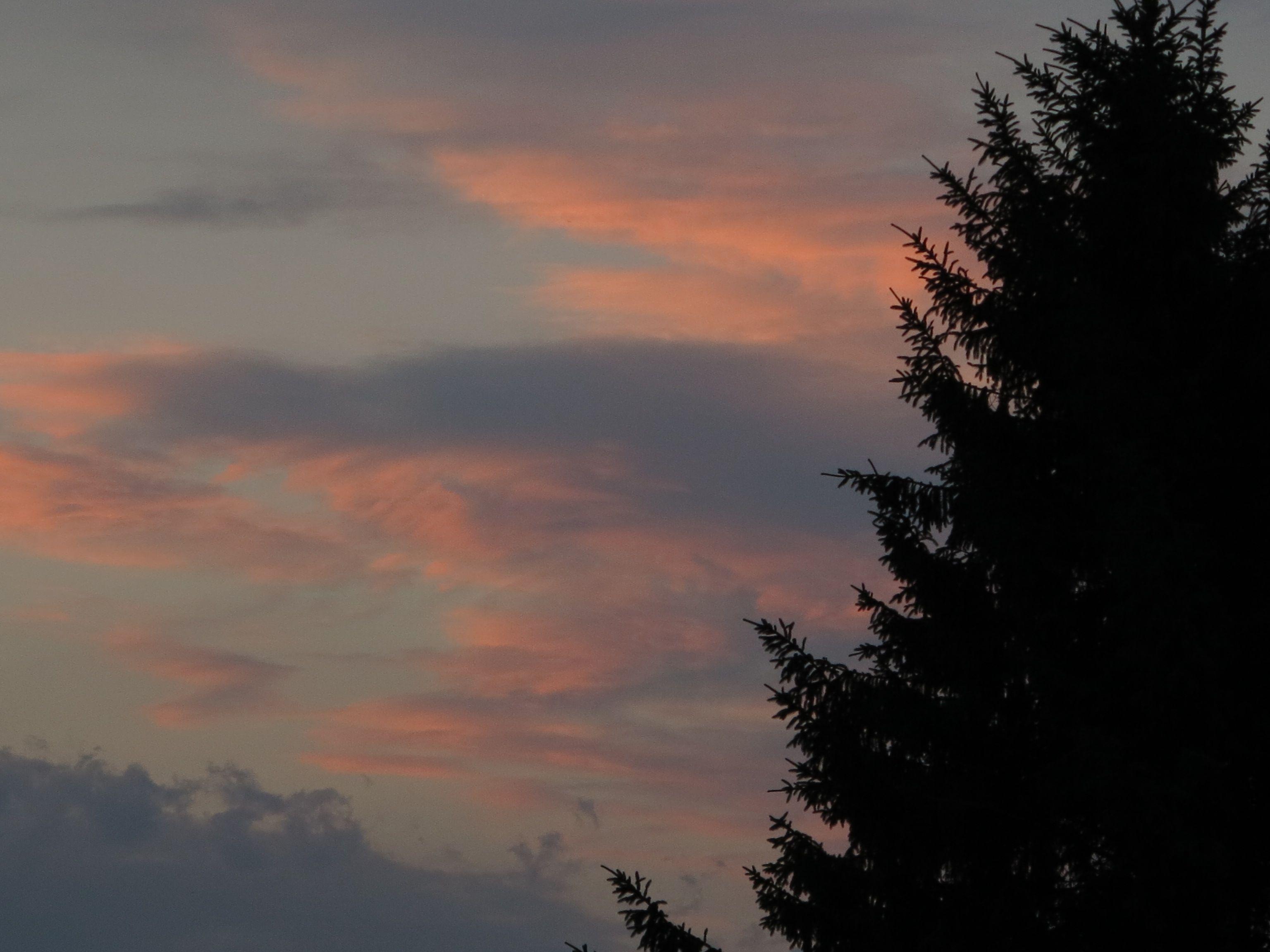 ce39d9a01c2f54 令和元年6月21日 今日と今週末の天気予報と週間天気予報 さっぽろ歳時日記 【人間もクマさん達も活動しやすい、過ごしやすい気温の日が続く札幌と札幌近郊】