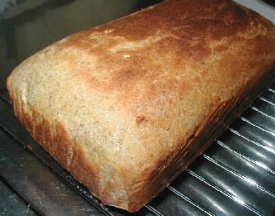 おからパン10