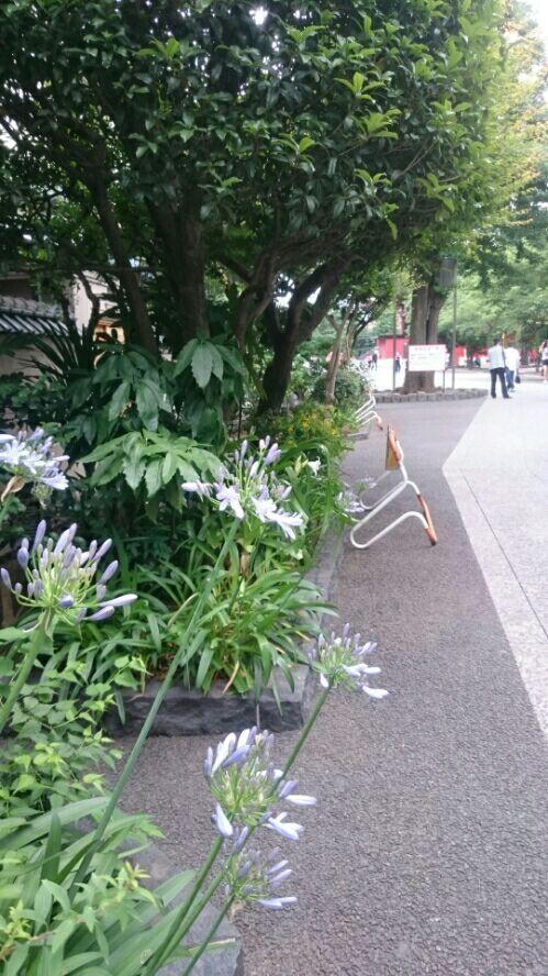 rblog-20170619043406-01.jpg