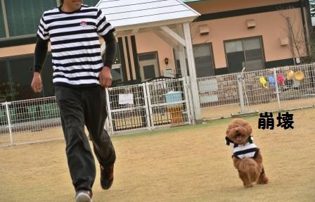 到着後のラン (115).JPG