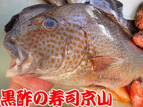 寿司 出前 江戸川区 西一之江